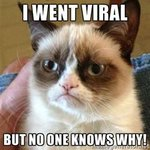 "RT @HalfaBubbleOut: ""Is Virality the Key to Grow Your Business?"" http://t.co/vHCoMICq7p by @halfabubbleout #Viral #Content #Marketing http://t.co/wl3j0uX7Is"