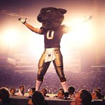 RT @BSFStadium: Our mascot is better than yours #EMAW #Willie http://t.co/wRq3kMwPRF