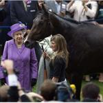 Britains Queen Elizabeth IIs racehorse tests positive for morphine, a banned painkiller http://t.co/FdxOJUPbTZ http://t.co/QfqJ335TzA