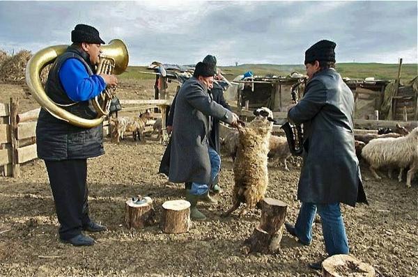 【ファンファーレ・チォカリーア】  まだ、村で羊と踊ってるヤツもいるぞ!明後日からフジロックなのに何やってんだ!  ★フジロック出演日 [7/25金曜日19:00 カフェドパリ] [7/26土曜日 21:20 オレンジコート] http://t.co/tDfxKd3PIw