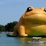 Chinas censors are apparently banning mentions of a giant inflatable toad http://t.co/p3TyHqzsFK #NewsFromElsewhere http://t.co/bVc3yN6AG8