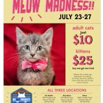@kcpetproject Meow Madness special 7/23-7/29 adult cats $10 & kittens $25, buy one get one free! http://t.co/W8zmROLqyP #1mc @1MillionCupsKC