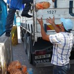 News: @WFP reaches more than 100K conflict-affected people in Gaza as food needs grow http://t.co/yOSY773nRH http://t.co/bGmx8Zq0gD