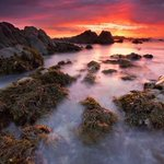 RT @MontereyAq: Spectacular! RT @cmelakigor: Pacific Grove by Matt Kawashima via http://t.co/7NQ2K7e3uq #500px http://t.co/aGzj8E6AFn