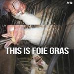 India 1st to impose complete ban on foie gras sales https://t.co/13M6FXJG1Y #banfoiegras https://t.co/aePMtkC55I  @TheSun @Telegraph