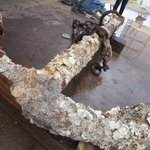 RT @TAMU: This 222-year-old anchor traveled 2,200+ miles to #TAMU! Find out why: http://t.co/42KwVB4nif http://t.co/8aYCSxyQ56