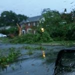 Trees down in Conway on Prince St a block from Kroger. @KATV_Weather http://t.co/8oD7W0EqYN