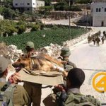 RT @Ostrov_A: Brothers-in-arms! Great photo of #IDF troops carrying their loyal dog, injured in battle. #Israel http://t.co/Pnq4YjQOdJ