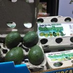 RT @FresnoFoodExpo: We love this avocado packaging concept from @ShanleyFarms #FresnoFoodExpo @SaveMart @thepacker http://t.co/6sP0SEYlHu