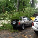Trees down in Courtland #stormmode http://t.co/oSXSmQwI2N