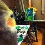 RT @JHouton: Working on bird paintings for a fall Boston show (thats my pet bird) #painting #Boston #janelhouton #artist #art http://t.co/spKjsZyTTo