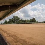 RT @keeneland: Keeneland Begins Installation of Dirt Racing Surface. http://t.co/1mNNXTJQay http://t.co/SsUmDJ6W4o