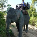 Live and Love Travel? Wenna from #Cheltenham Kuoni has been elephant trekking in #Thailand. http://t.co/B2vdtxK2yK