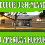 Promised a doggie Disneyland. They put 28 dogs in a small room to die. They called their families and lied #Gilbert23 http://t.co/kpCoaibRsg
