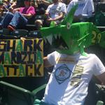 Our @Athletics fans are awesome! http://t.co/ifJj4YpHp1