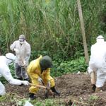 RT @DailyMonitor: Doctors exhume bodies from Bundibugyo mass graves: http://t.co/aZ10xmWmNJ #RwenzoriAttacks http://t.co/UaO3rrqQXc