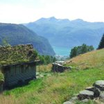 RT @bestnorwegian: #Norway Berdalsseter in Valldal in 26ºC on this beautiful Friday http://t.co/Tm87u78IVu