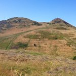 RT @edinspotlight: Arthurs Seat / Holyrood Park at the moment #edinburgh http://t.co/UnNUknFF26