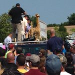 "RT @LaurenD_Trib: Paulenka unveils giraffe as official mascot of MB rally ""Sometimes you need to stick your neck out for your family."" http://t.co/olLmgkElz2"