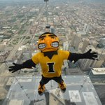 RT @SkydeckChicago: @TheIowaHawkeyes #Herky must have felt right at home up on #TheLedge with the other #Big10Mascots today! http://t.co/ZIjuTXX1rQ