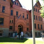 The @montanastate owls are quickly becoming one of Bozemans top tourist destinations. http://t.co/R09R14vJBN