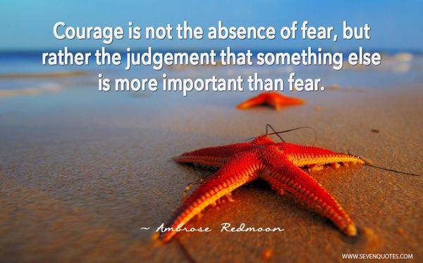 """Courage is not the absence of fear, rather the judgement that something else is more important than fear.""A. Redmoon http://t.co/BY7KvtIOkm"