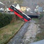 And here we see a wild bus drinking water from a river http://t.co/TCeTDen0CS