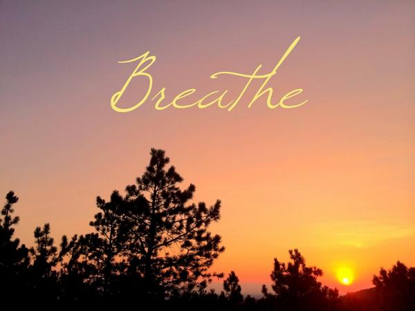 Breathe deep breaths of love and gratitude for all that is present here now http://t.co/yPv9VkYeZT