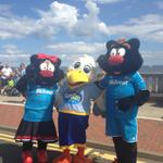 .#SunAirshow Sunny the Seagull made 2 new friends at the beach yesterday @SunderlandAFC http://t.co/zIwmusf138