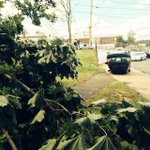 Cars overturned and trees down after a possible #tornado whips through #revere #7news #news #Boston http://t.co/Lw6VElZItW