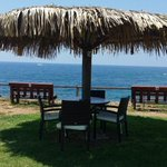RT @CyprusEscapes: Breakfast at the beach bar a short walk away is included at the SeaHorse in SeaCaves #Cyprus http://t.co/vESmcgaNbt http://t.co/Y4s7AbTnOw