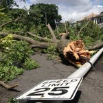 25mph? More like 0mph. Trees down = no go #Revere #wcvbstorm #wcvb http://t.co/kRVx0Mphqn