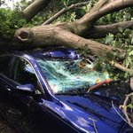 RT @BostonMagazine: Officials confirmed a tornado touched down in #Revere today. http://t.co/KWA36KuyVf http://t.co/Xqebs9y5tZ