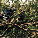 A tree looks like it swallowed this SUV, #tornado #7news #storm #news #boston http://t.co/45ZrjNU0LN