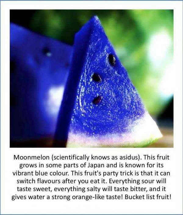 Ever heard about Moonmelon: http://t.co/1rNqeSem4s