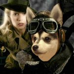 Pomsky Captain and the World of Tomorrow #DogMovies @midnight http://t.co/nJc37wkcSf