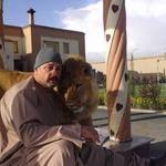 RT @bashirgwakh: President Karzais influential cousin #HashmatKarzai was recently in news for his pet lion.Killed in suicide attack https://t.co/lVMnvLKTIc