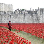 RT @thei100: Each one of these 888,246 poppies represents one British military fatality in WWI http://t.co/nj7KWMFduM http://t.co/wOmK9QGcaR