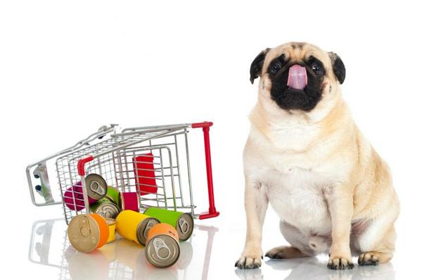 U.S. demand for pet food #packaging to reach $2.5B http://t.co/yMYDo8I40s http://t.co/BKeNV0GspD