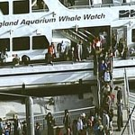 """@BostonGlobe: Passenger on stranded whale watch boat said it was ""cold, bumpy,"" http://t.co/awBTbAzcng http://t.co/mElNoWpDKV"" no really?"