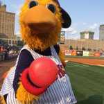Muddy wants YOU 2 RT to#VoteMuddyMudHens! @MudHens have the best mascot in @MiLB http://t.co/cHDnhJ5FOn #MascotMania http://t.co/UrOpaKoFLw