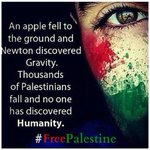 RT @AsimKhanPTI: Where is humanity??? #FreeGaza #FreePalestine #Gaza #Gazaunderattack http://t.co/4ykhrODg3z