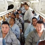 Heres what 29 sumo wrestlers on a small plane looks like. https://t.co/Fhle8WvFNd