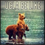 The best #UCLAflood Instagram humor weve found so far (altho if your car is flooded in the garage, condolences) http://t.co/acJe504gWN