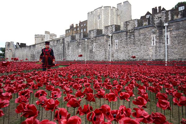 Tower of London commemorates WW1 with 888,246 ceramic poppies - could we get that many RTs @PoppyLegion http://t.co/1Aua1qdIXS