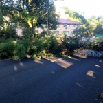 Pic of Downed Tree at SW 4th & Caruthers ( Near PSU ). No Wind, No Rain... Wheres the Chainsaw...? #pdxtraffic http://t.co/FArwedNIEM