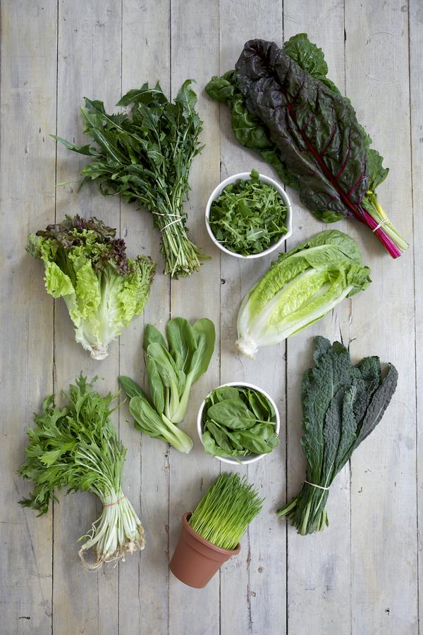 GREENS: Like the coolest thing next to Mason Jars: What to #juice: http://t.co/PC2mzqgNwg with @Shape_Magazine http://t.co/afMIE3pZjR