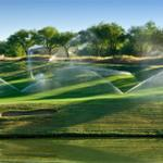 RT @MarketingRxCa: I think that #Yeg #Golf courses today should have the sprinklers on when you play. #Yegheatwave Whos with me? http://t.co/qXbrOCkvHM