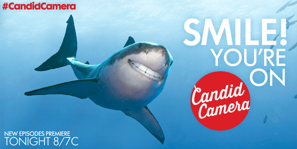 #SharkCam = #CandidCamera for Sharks, obvi. #SharkWeek http://t.co/GiyFnrKHHT