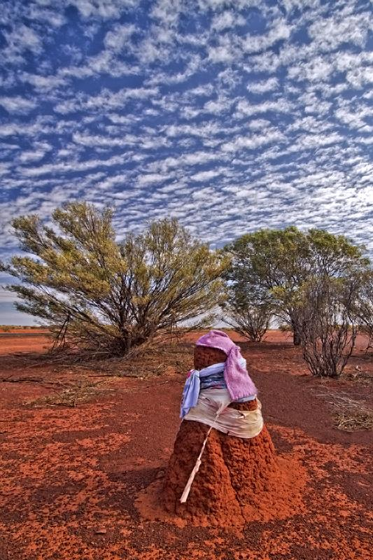 RT @TasPhotos: 'Dressed up' termite mounds by the roadside are a regular feature in @WestAustralia http://t.co/ppr7KgKwmy